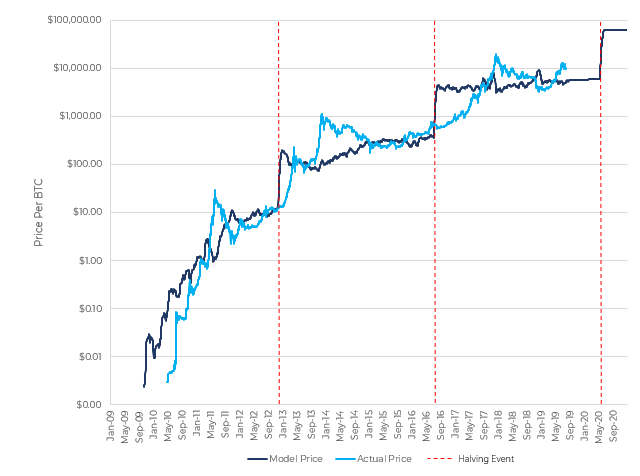 Bitcoin halving price charts